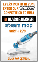 Win a Black & Decker Steam Mop!